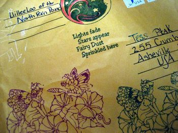 TESS fairy packet env
