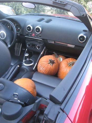 MADISON pumpkin car