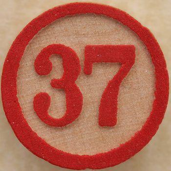37bingo