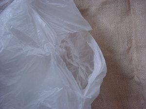 Plastic_bag
